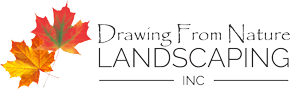 Drawing From Nature Landscaping