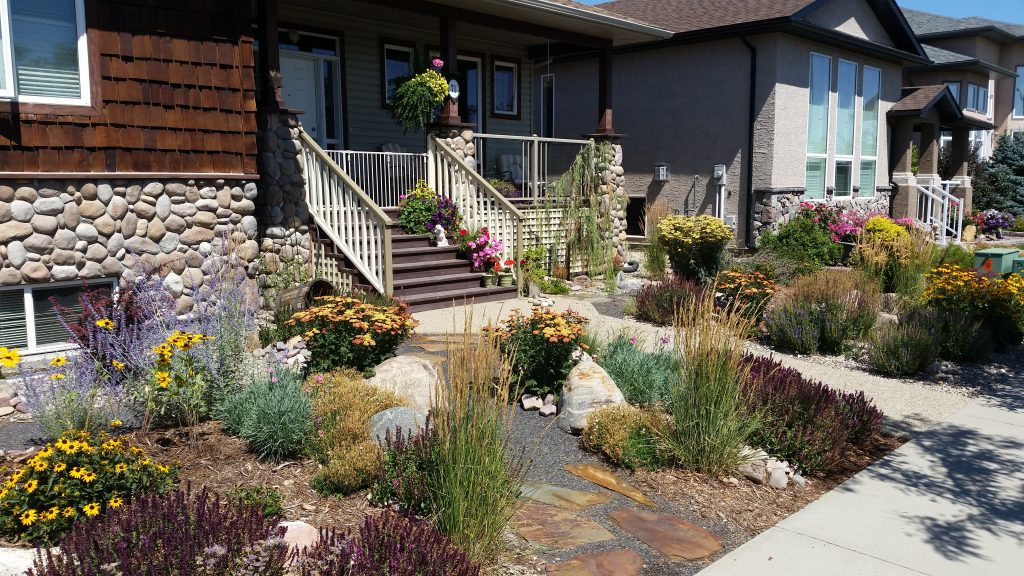 Front yard remodel